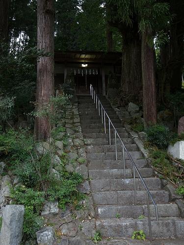 20131019_川苔山