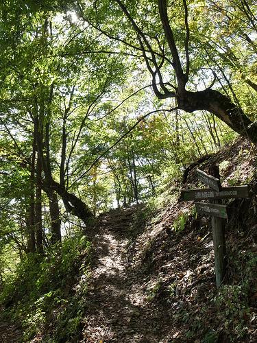 20131027_三頭山から槇寄山を経て数馬の湯へ