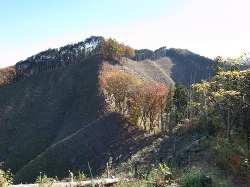 20131124_今熊山から刈寄山