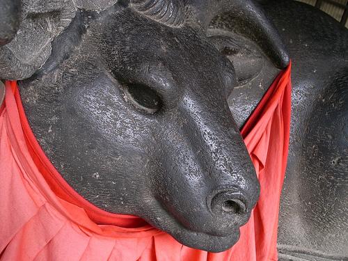 20090802_牛島神社の撫で牛
