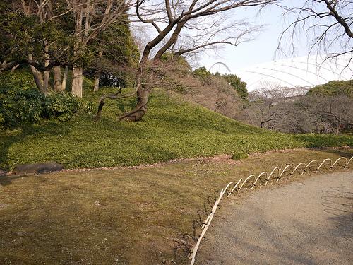 20100131_後楽園