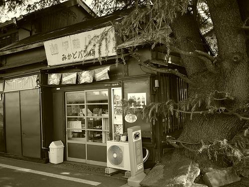 20100425_根津