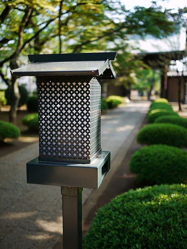 20100501_豪徳寺