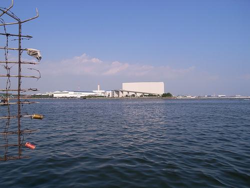 20100821_江戸川下流