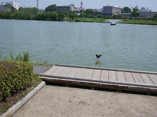 20110717_水戸・笠間一泊目の水戸